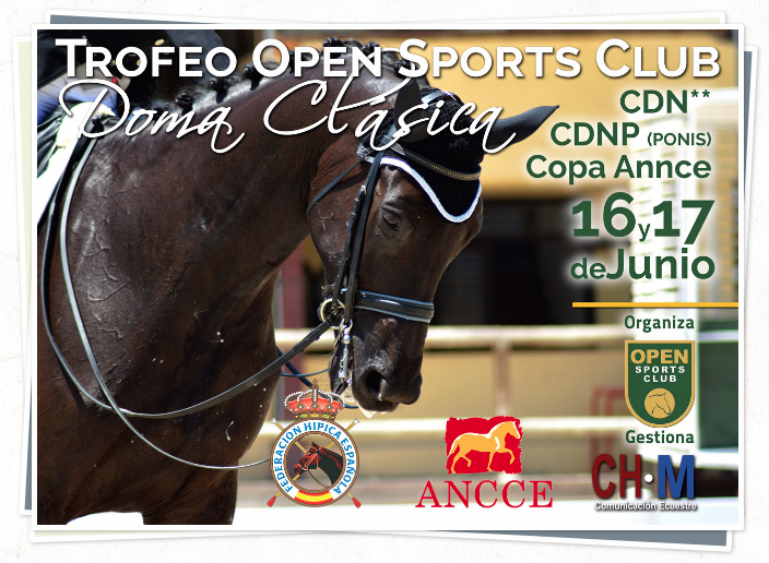 Trofeo Open Sports Club Junio 2018